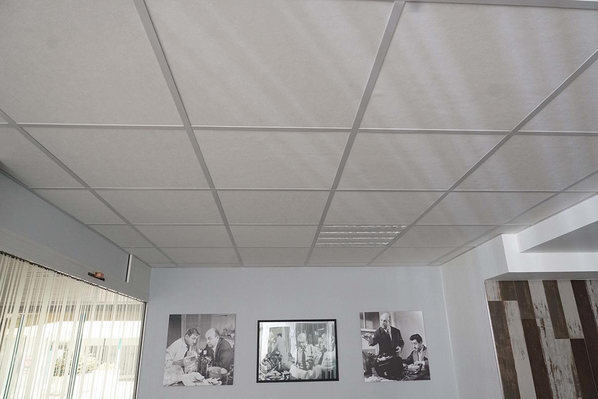 faux plafonds blanc